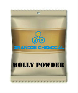 MOLLY POWDER